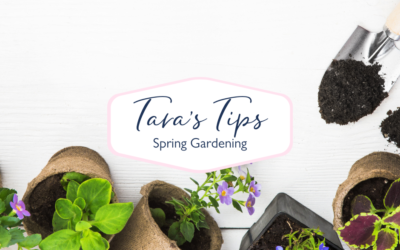 9 Spring Gardening Tips for the Weekend